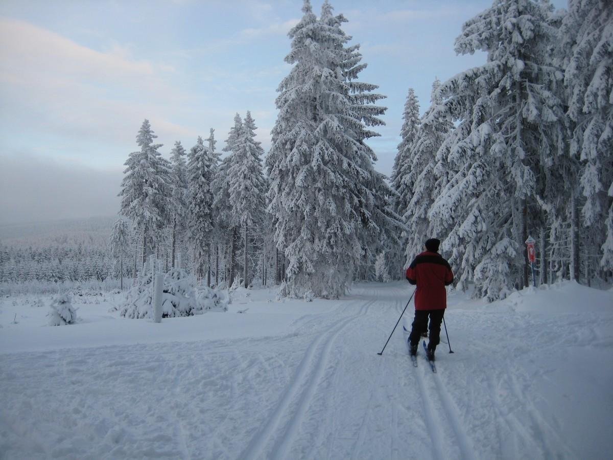Tellerhäuser Skiwanderweg