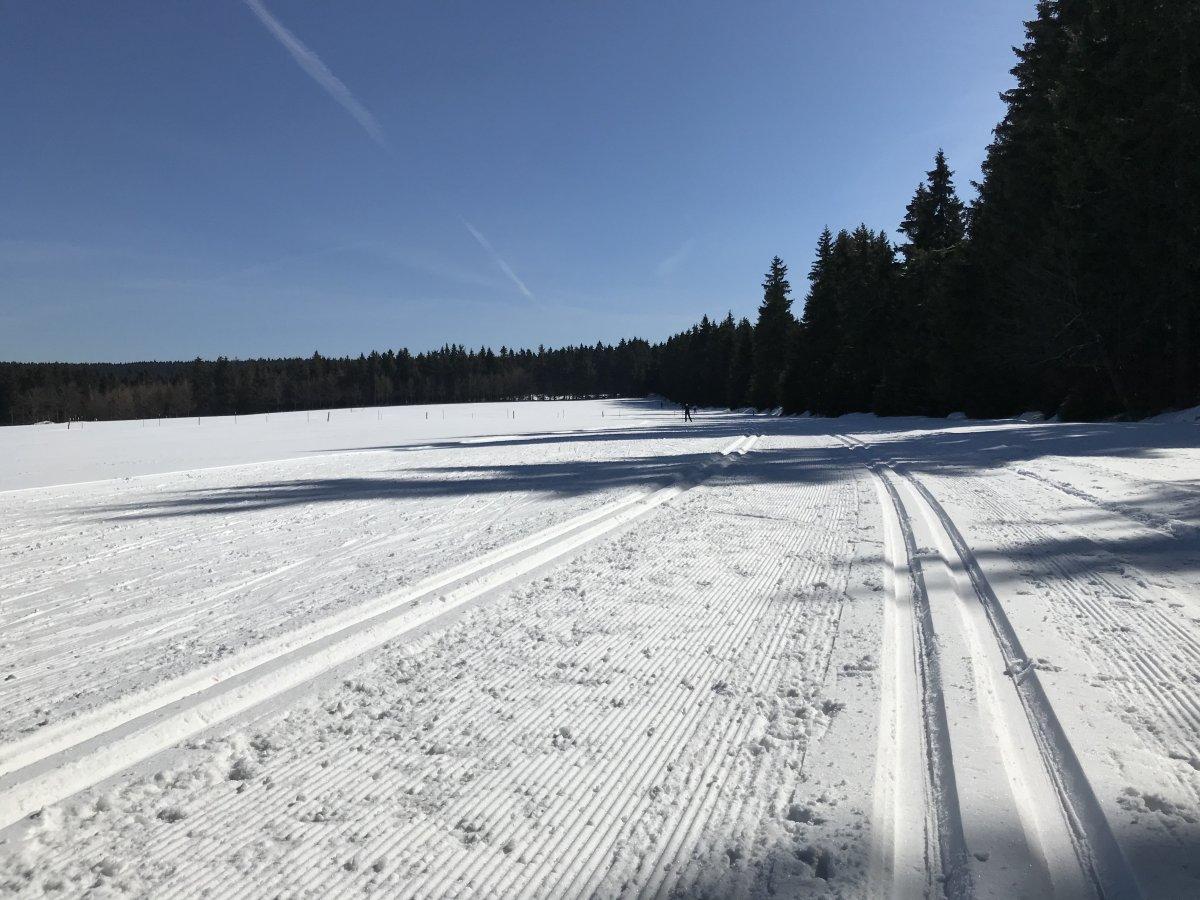 Grenzwiese Tellerhäuser unmittelbar an der deutsch-tschechischen Grenze
