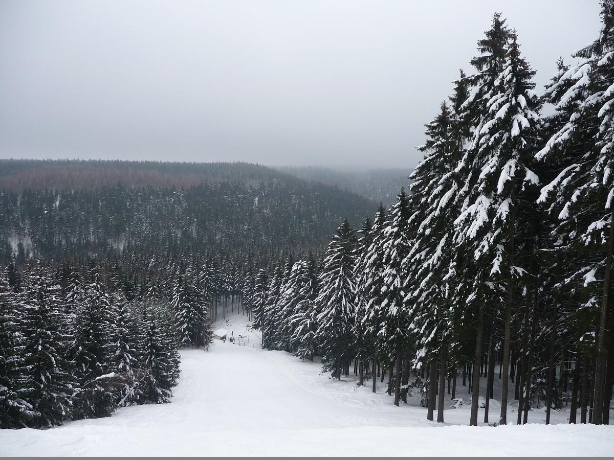 Skihang Oberbärenburg, unterer schwarzer Pistenteil