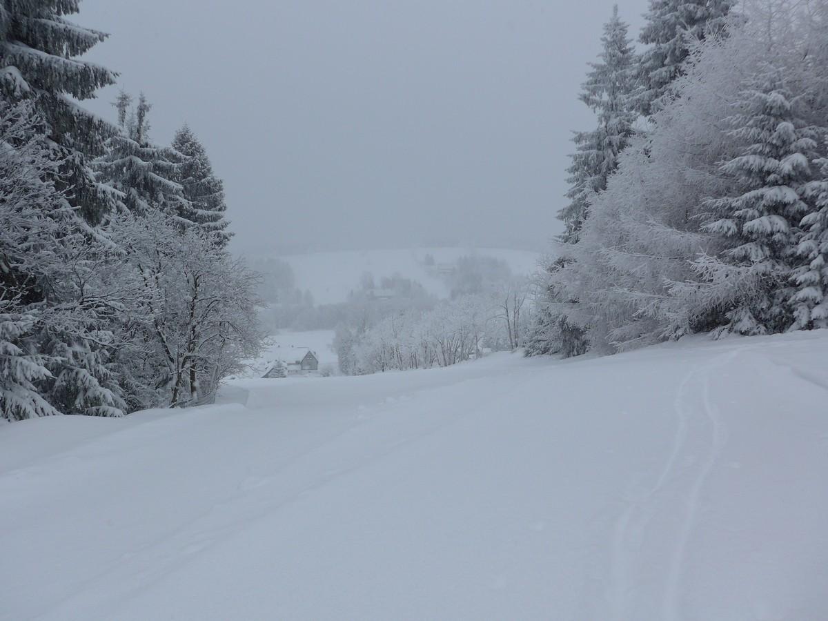 Am Rotterhang bei Schellerhau