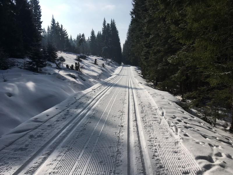 Im langen Anstieg von Prasily hinauf zum Berg Poledník