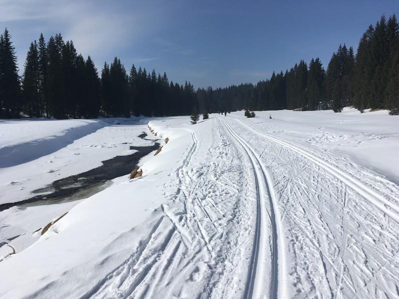 Sehr anfängerfreundliche und schneesichere Loipe