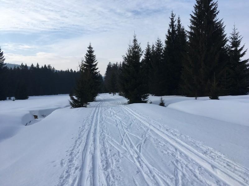 Bis Strazny geht es weiterhin überwiegend leicht bergab im Tal