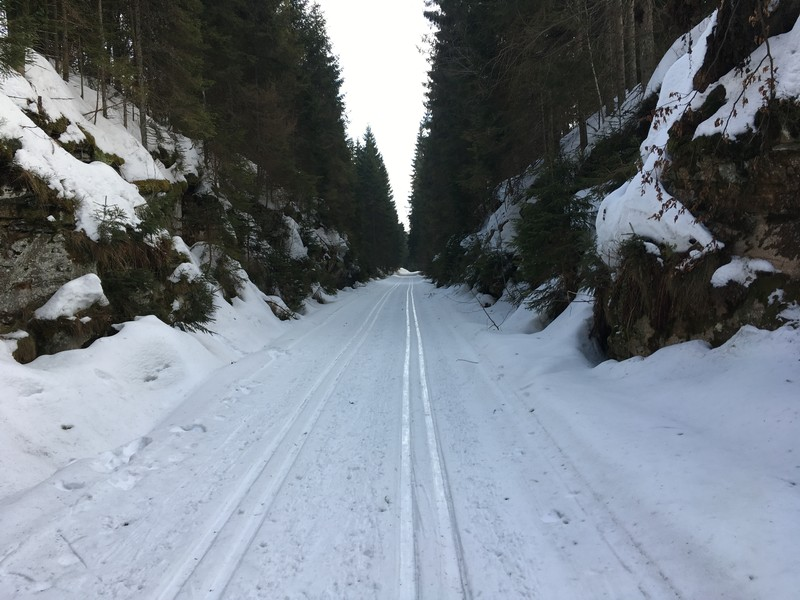 Loipe auf dem ehemaligen Bahndamm zwischen Haidmühle und Frauenberg