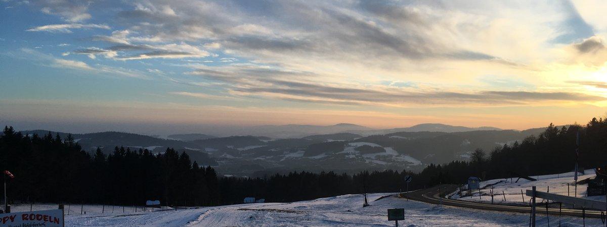 boehmerwald2
