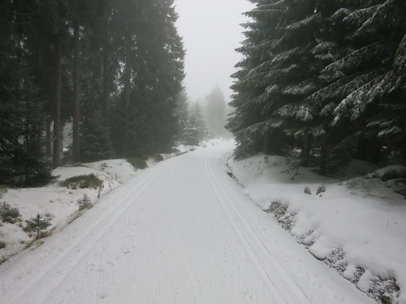 Loipe bei Bedrichov im Isergebirge