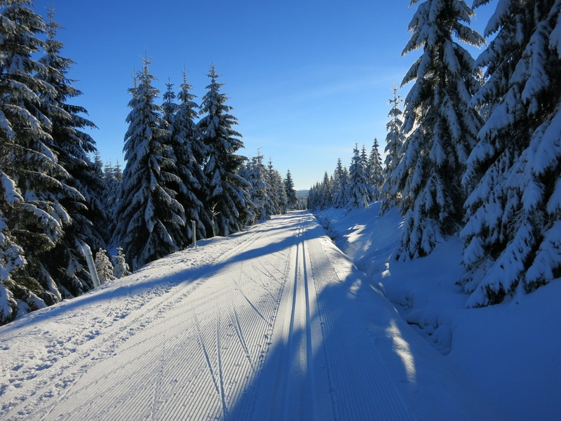 Traumhafte Loipe, traumhaftes Winterwetter im Isergebirge