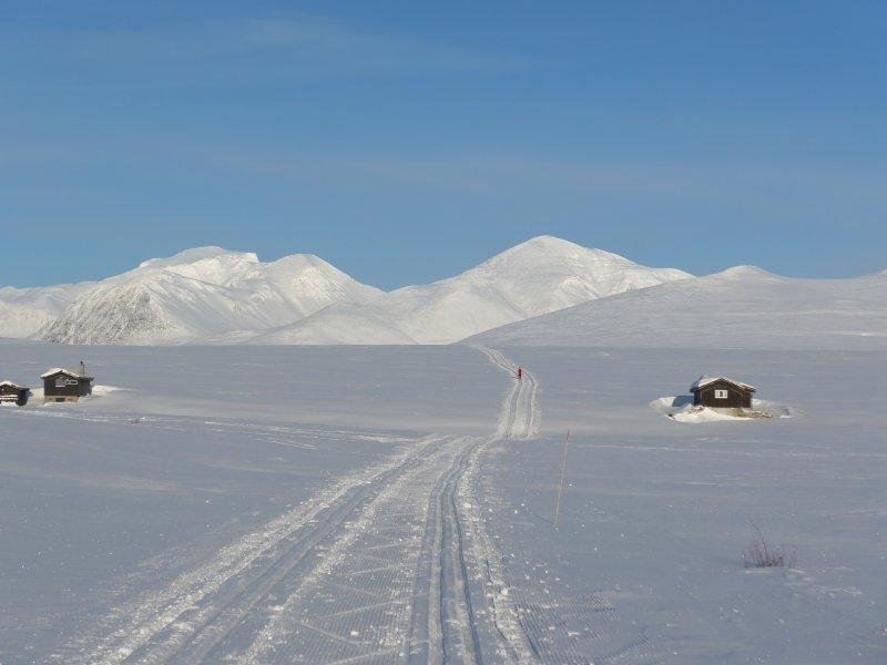Das Rondane-Gebirge fest im Blick