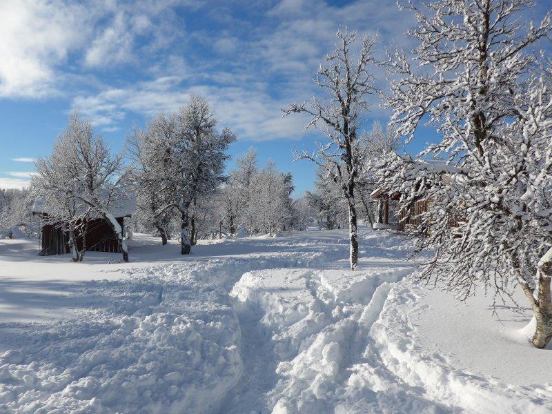 Vetåbua-Hütten im Winter