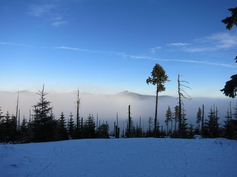 Im Bereich der Nebelgrenze am 1299 Meter hohen Cerná hora