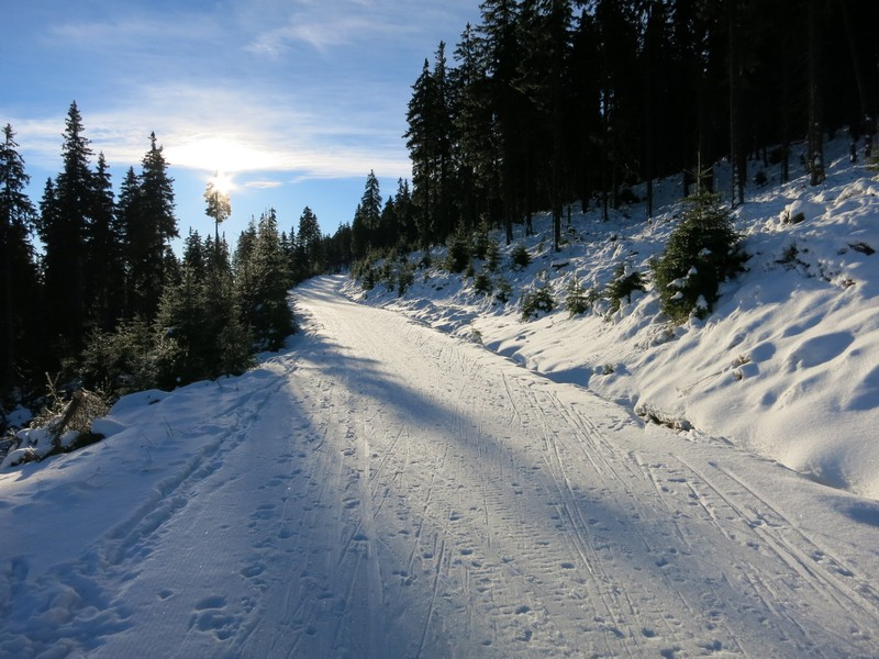 Kurz bevor die lange Abfahrt nach Janské Lázne führt